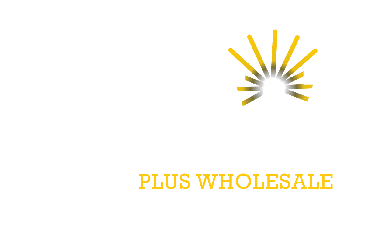 Lighting Plus Whole The Bright Choice