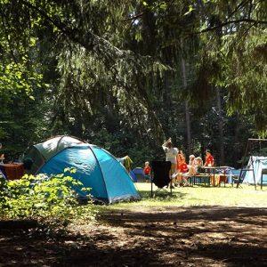 campground lighting solution